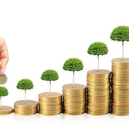 Sermaye Piyasası Kurulu (SPK) Nedir, Ne İş Yapar?